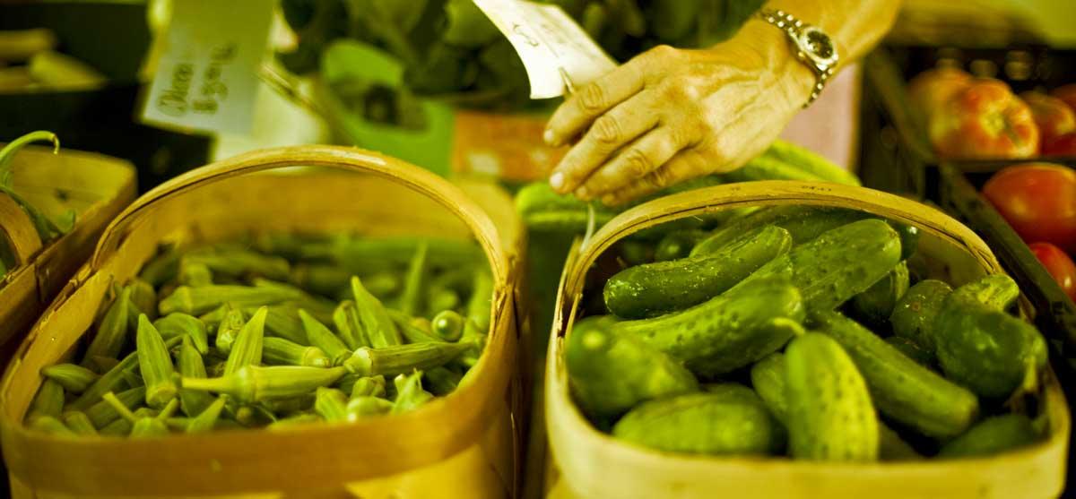 farmer-foodshare
