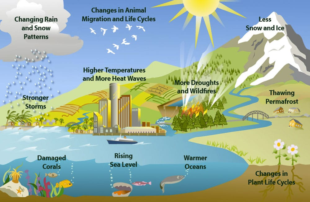 essay on the effect of climate change on food production Been postulated that changes in climate would have a vast effect on food production  climate change, food production  change and food in/security: a critical nexus.