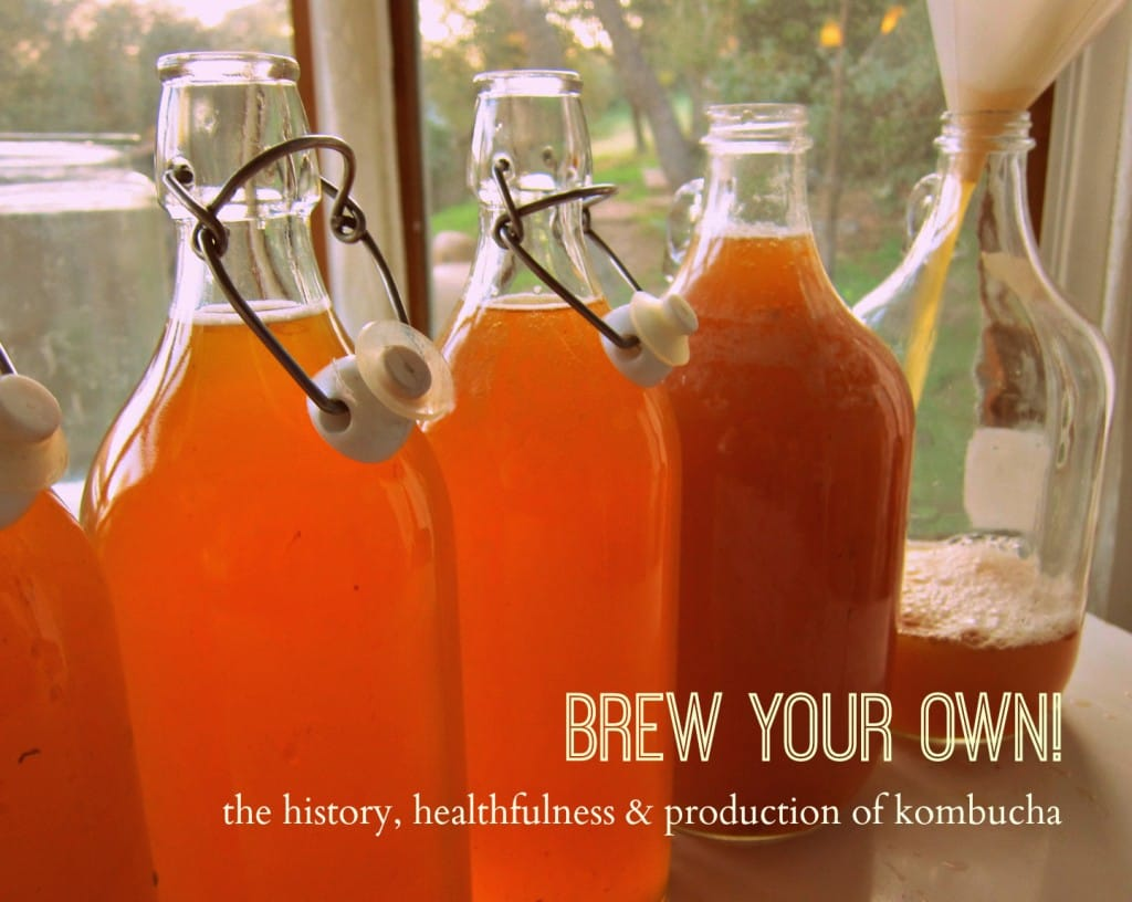 Brew Your Own! The History, Healthfulness, & Production of Kombucha