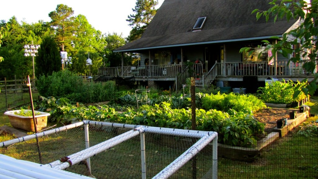 A Primer on Permaculture