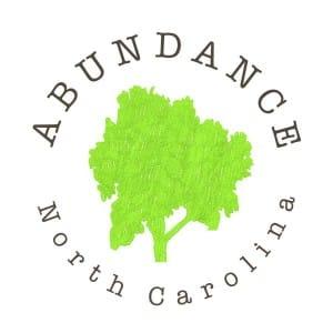 abundance logo