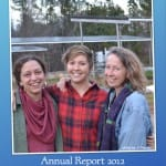 report shot 2012
