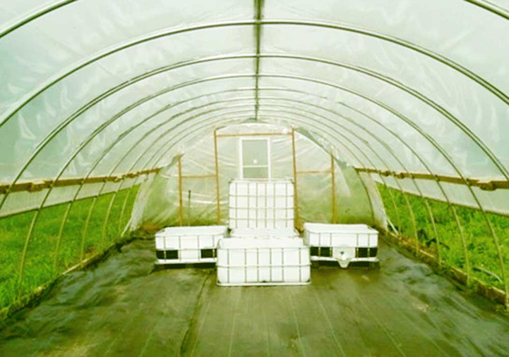 An aquaponics setup in a greenhouse.  You by no means need this much space to create your own aquaponics system.