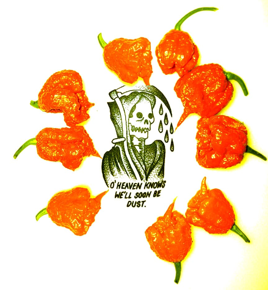 Why so spicy?  The science of peppers