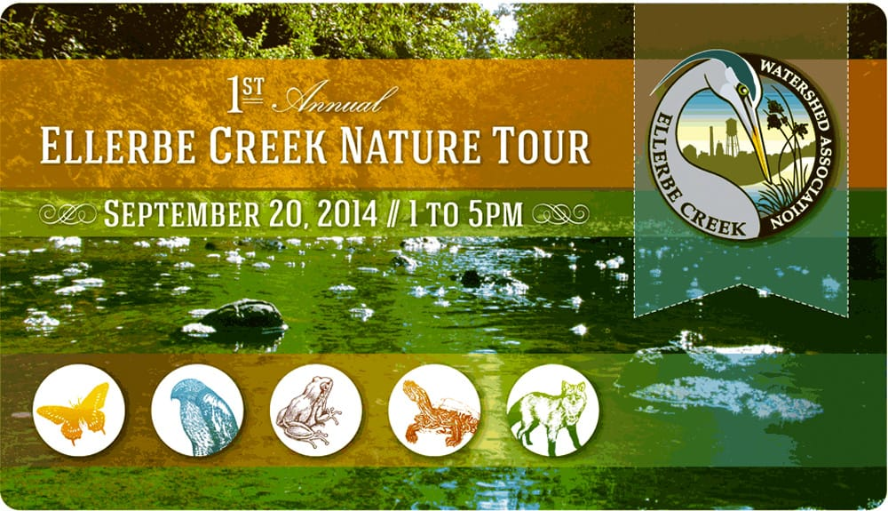 See migrating waterfowl today on Durham's first Ellerbe Creek Nature Tour
