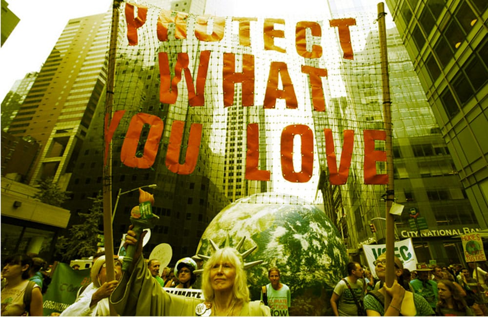 protect-what-you-love