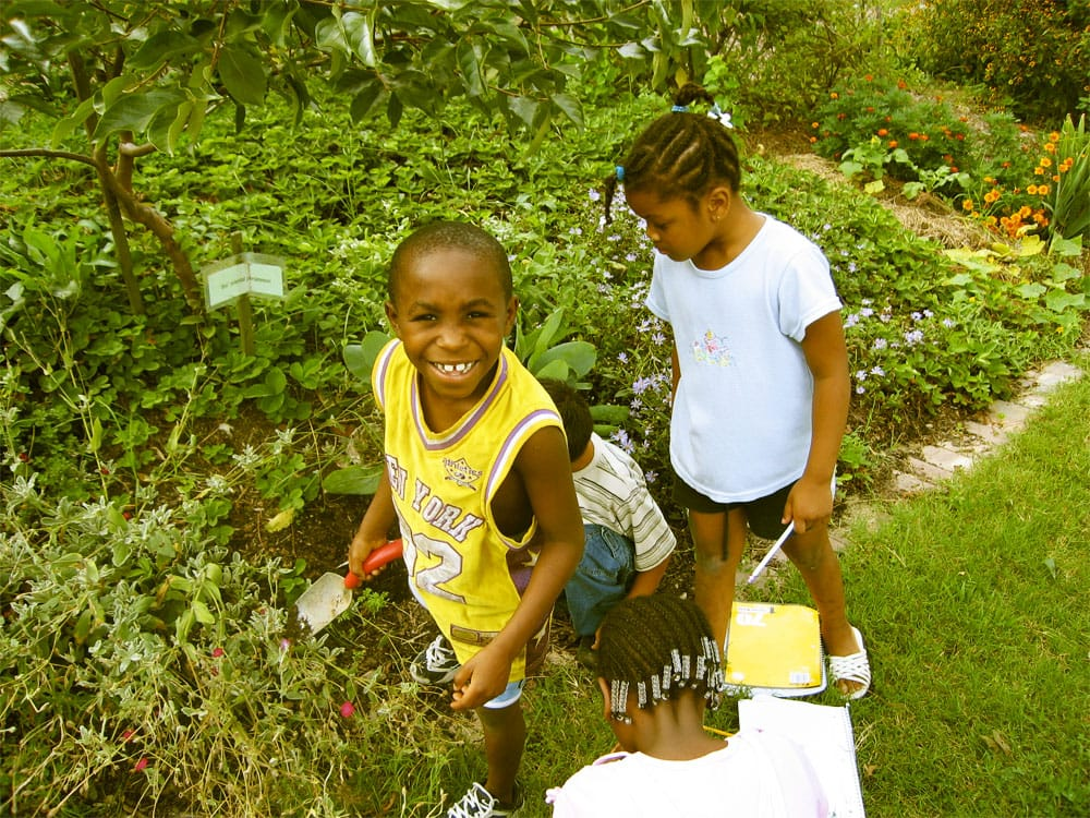 """Kids learning about gardening in <a href=""""http://seedsnc.org"""" target=""""_blank"""">SEEDS'</a> urban farm."""