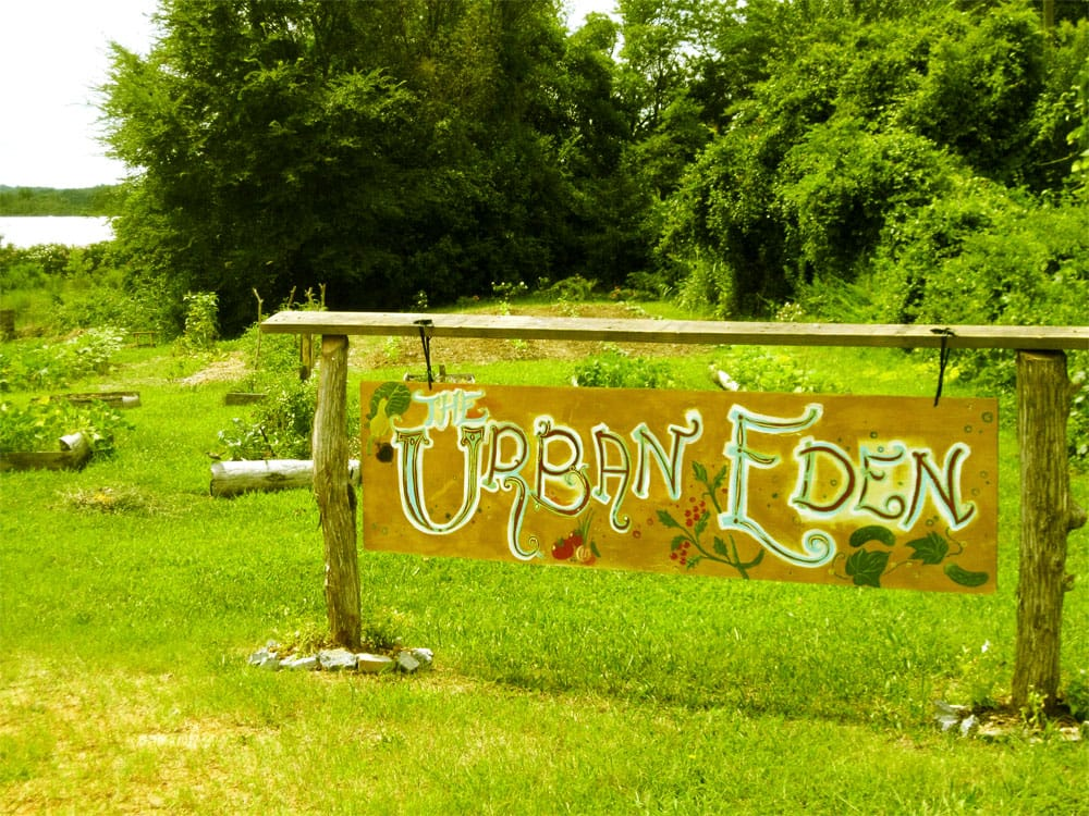A hand painted sign welcomes you to this urban oasis.