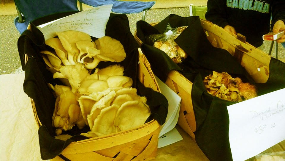 Mushrooms at the market stand of Fox Mushroom Patch, a Slow Money NC local food loan recipient.